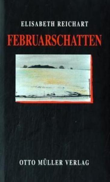 Februarschatten als Buch