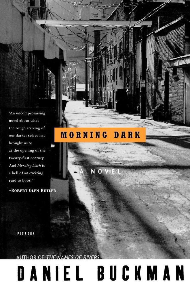 Morning Dark als Taschenbuch