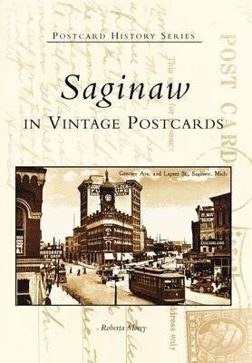 Saginaw in Vintage Postcards als Taschenbuch