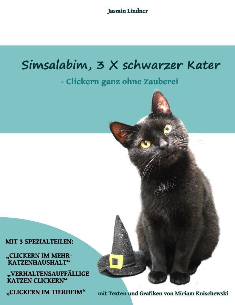 Simsalabim, 3 x schwarzer Kater als eBook epub