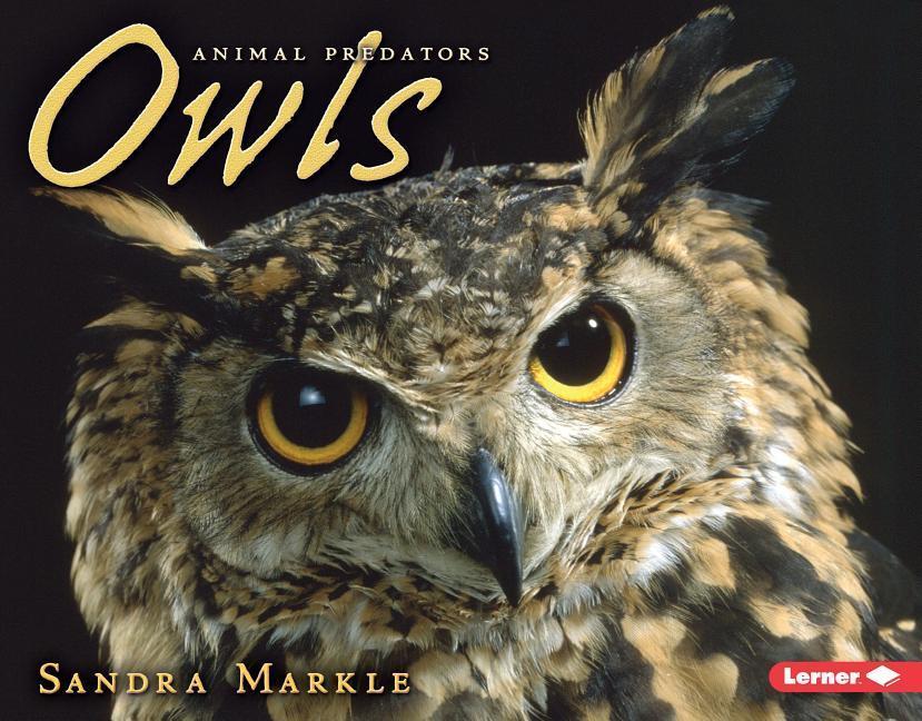 Owls als Taschenbuch