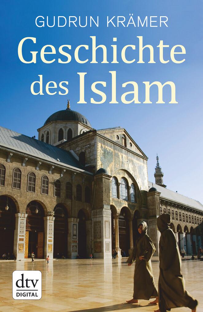 Geschichte des Islam als eBook epub