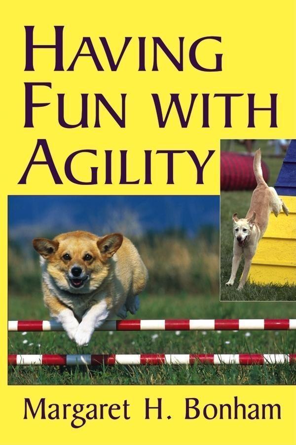 Having Fun with Agility als Taschenbuch