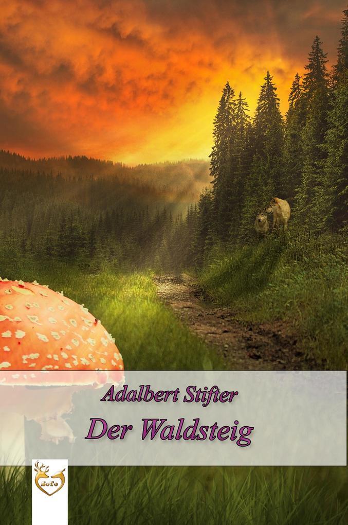 Der Waldsteig als eBook epub