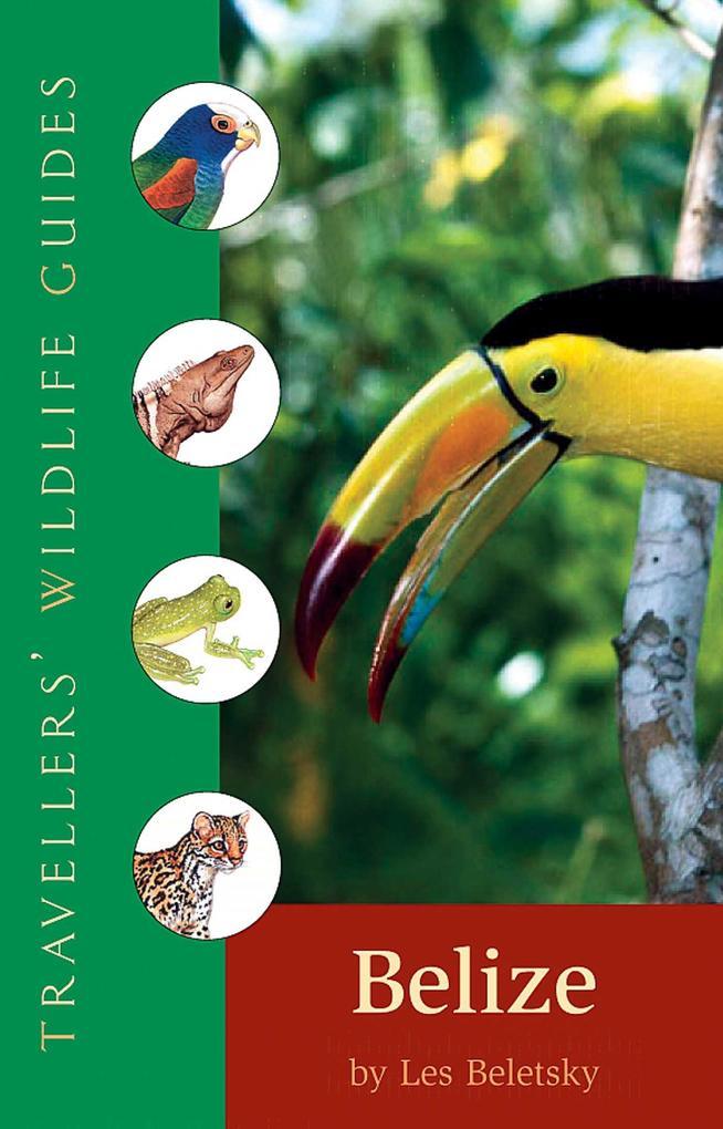 Belize als Taschenbuch