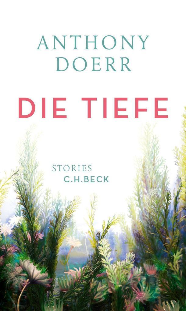 Die Tiefe als Buch (gebunden)