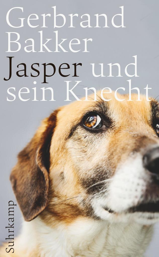 Jasper und sein Knecht als Taschenbuch von Gerbrand Bakker