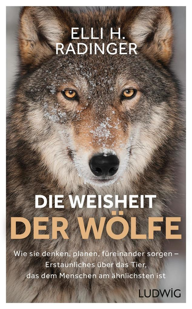Die Weisheit der Wölfe als eBook