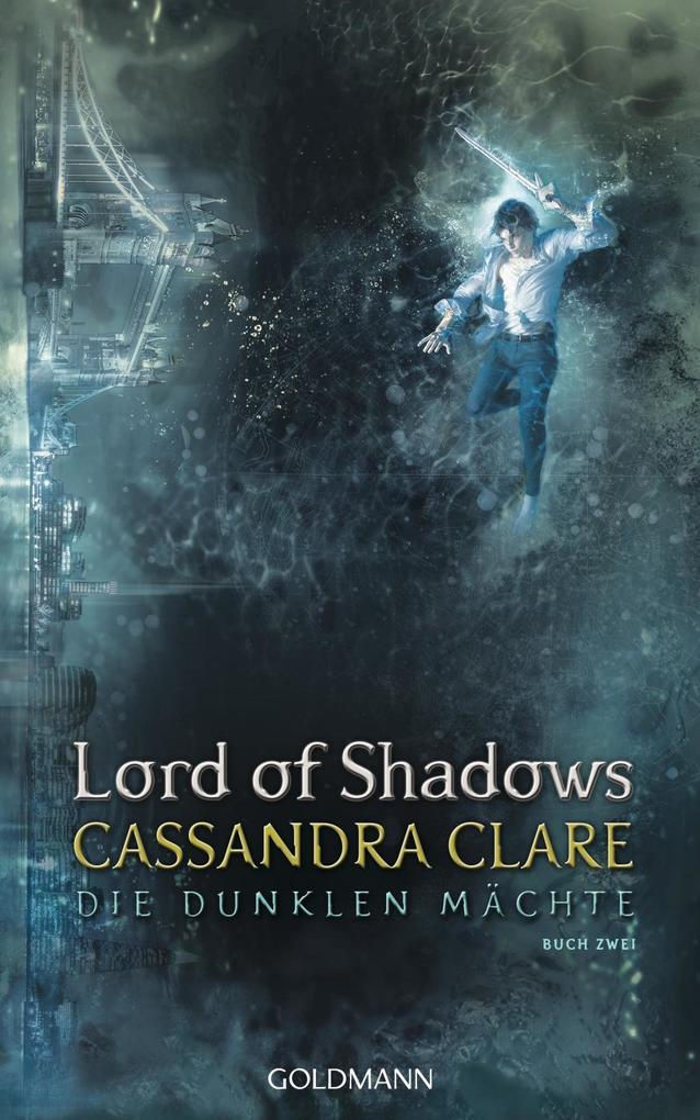 Lord of Shadows als Buch