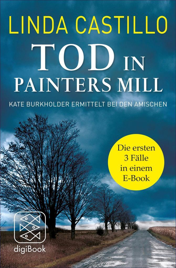 Tod in Painters Mill. Kate Burkholder ermittelt bei den Amischen als eBook