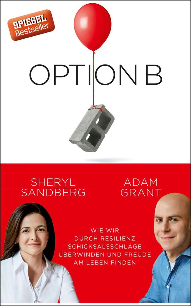 Option B als eBook epub