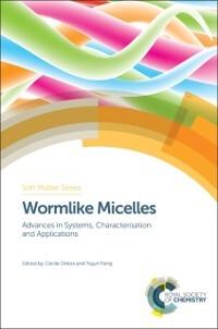 Wormlike Micelles als eBook von