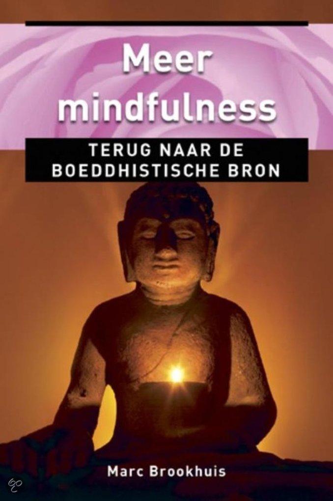Meer Mindfulness, terug naar de boeddhistische ...