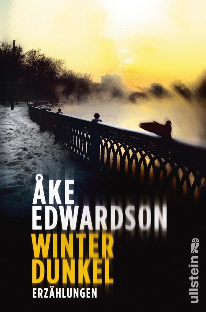 Winterdunkel als Buch