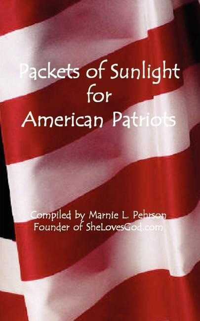 Packets of Sunlight for American Patriots als Taschenbuch