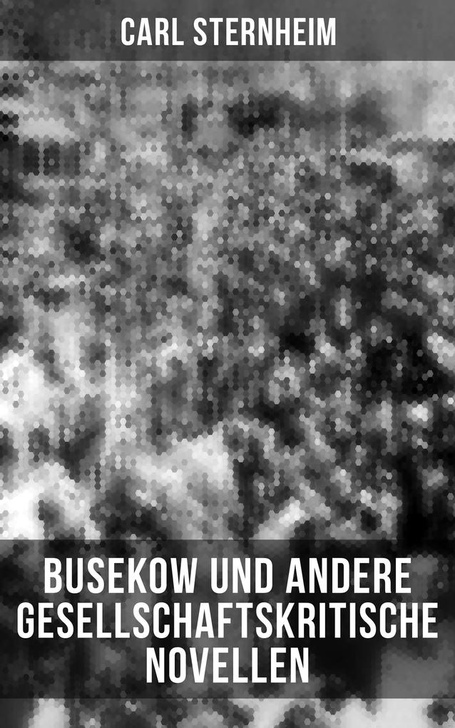 Busekow und andere gesellschaftskritische Novellen als eBook