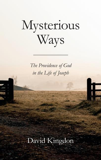 Mysterious Ways: The Providence of God in Life of Joseph als Taschenbuch