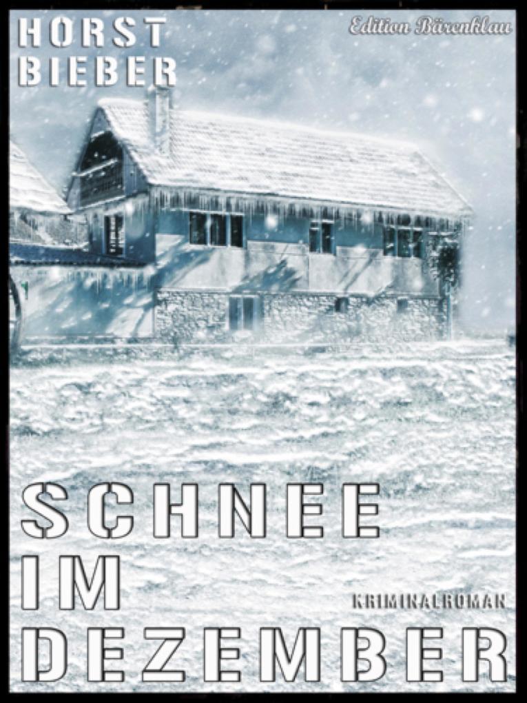 Schnee im Dezember als eBook