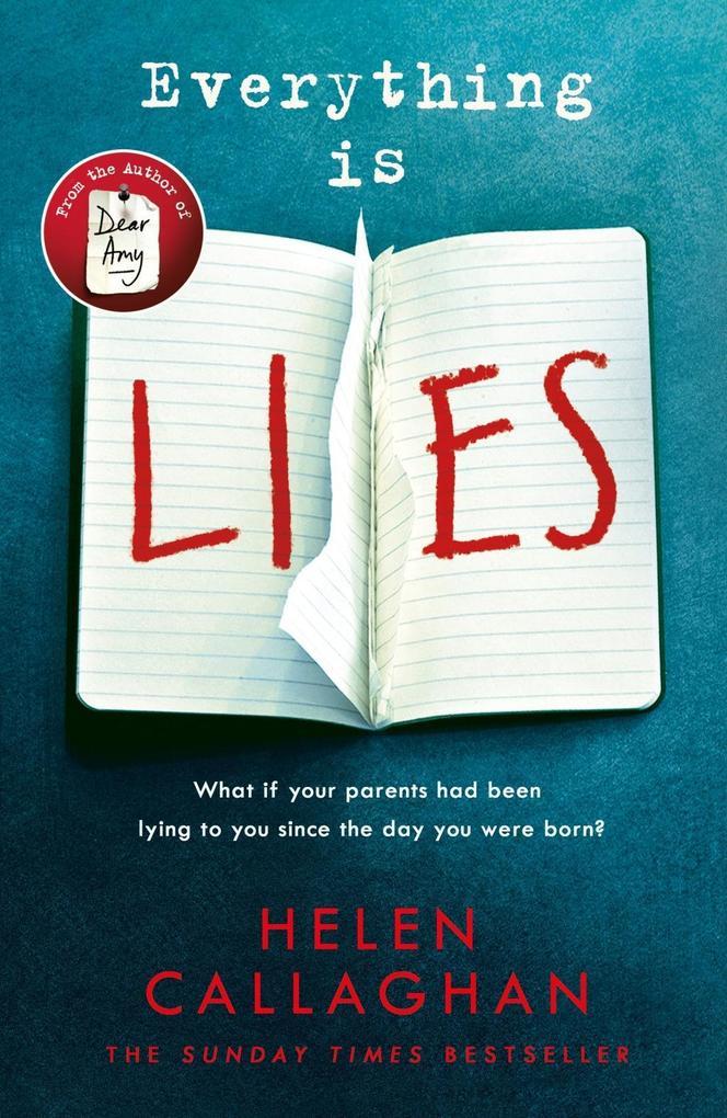 Everything Is Lies als eBook