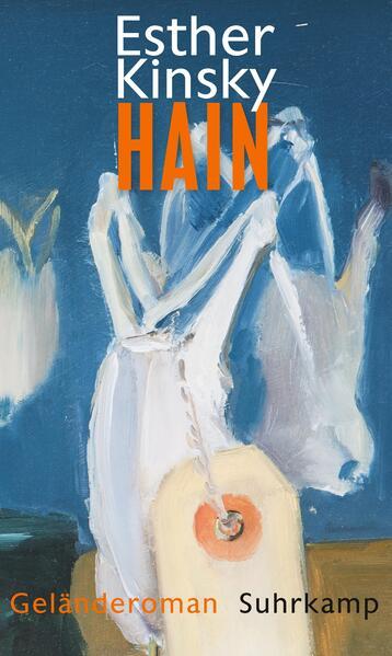 Hain als Buch von Esther Kinsky