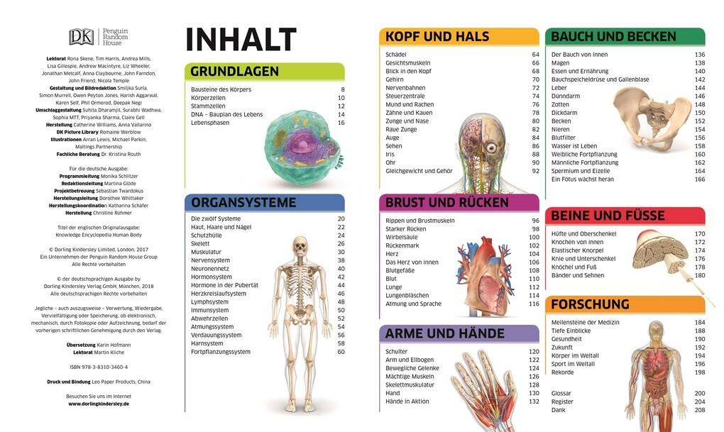 Schön Knochen Diagramm Menschlichen Ideen - Menschliche Anatomie ...