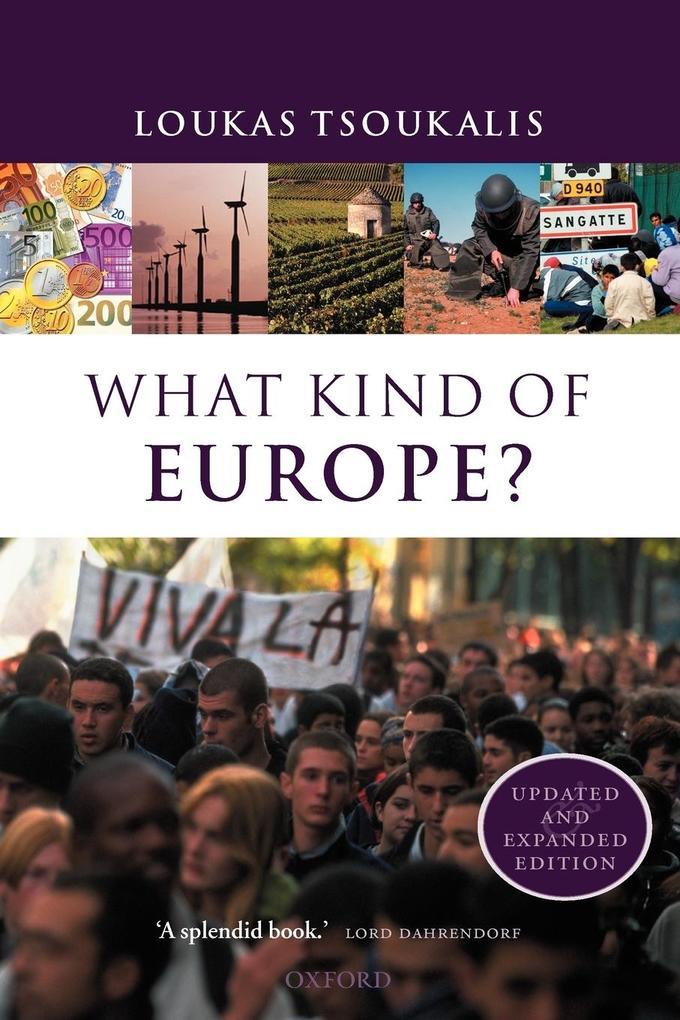 What Kind of Europe? als Buch (kartoniert)
