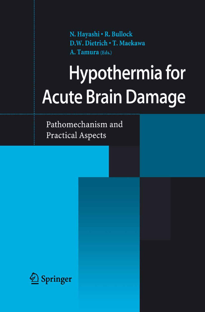 Hypothermia for Acute Brain Damage als Buch (gebunden)