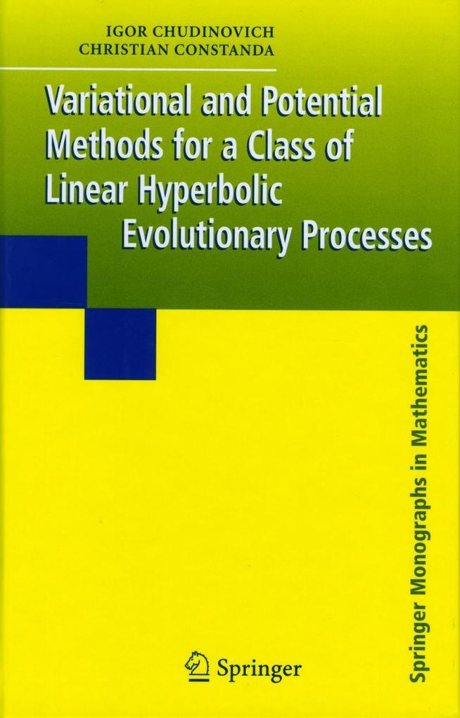 Variational and Potential Methods for a Class of Linear Hyperbolic Evolutionary Processes als Buch (gebunden)