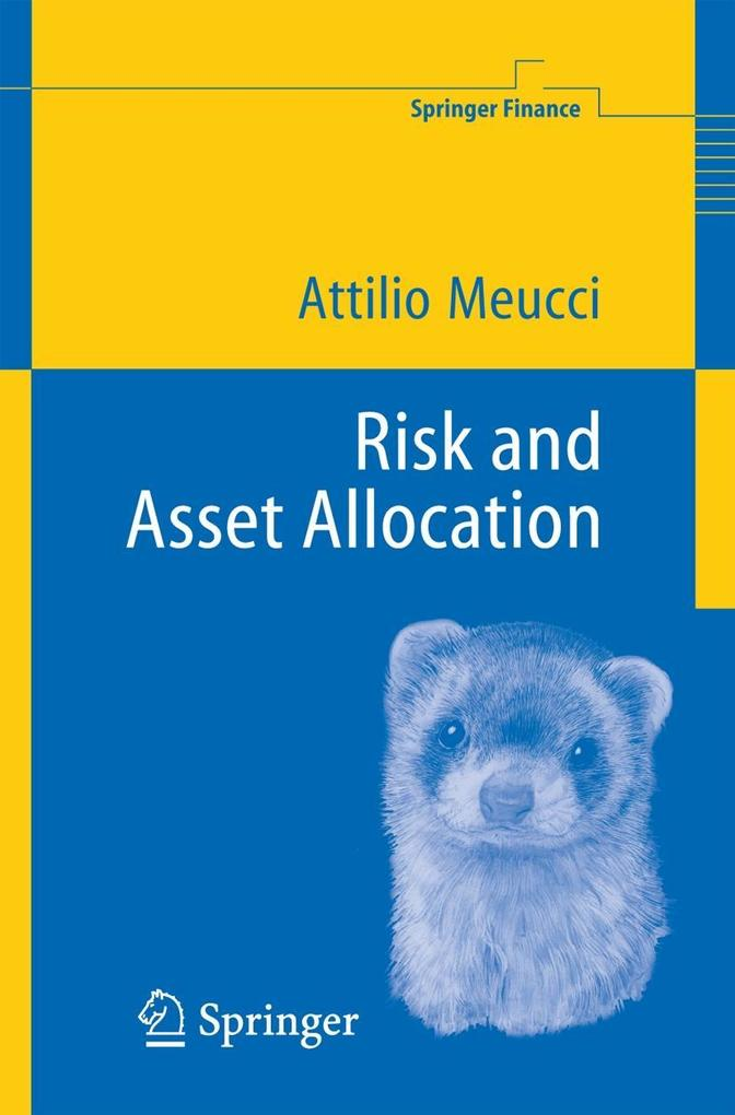 Risk and Asset Allocation als Buch (gebunden)