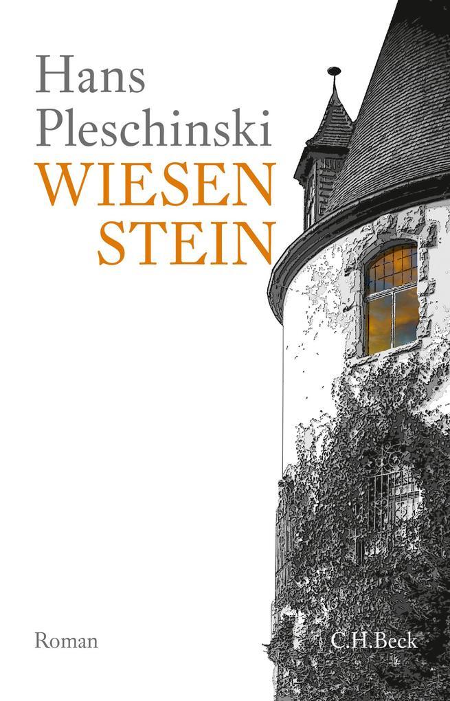 Wiesenstein als Buch