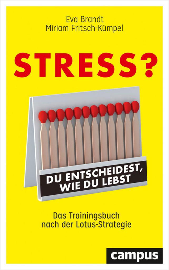 Stress? Du entscheidest, wie du lebst als eBook