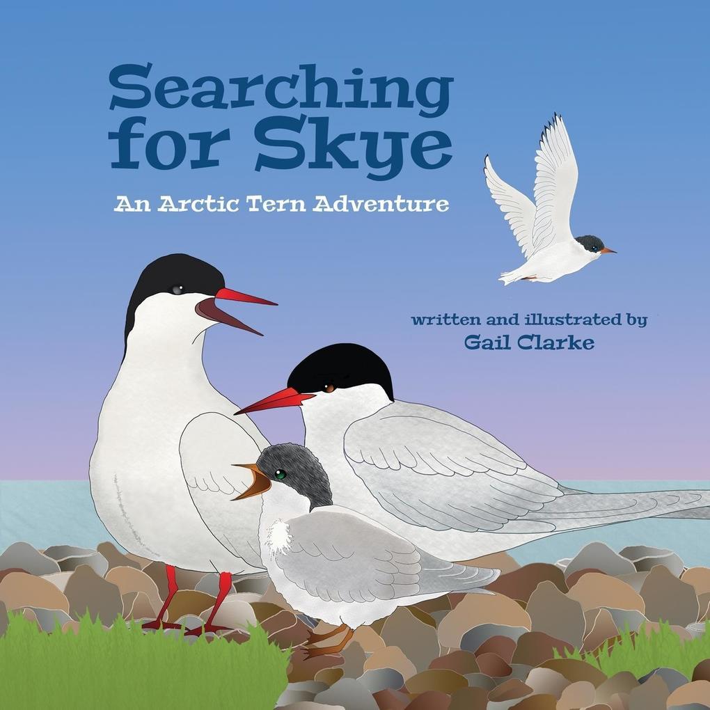 Searching for Skye als Taschenbuch von Gail Clarke