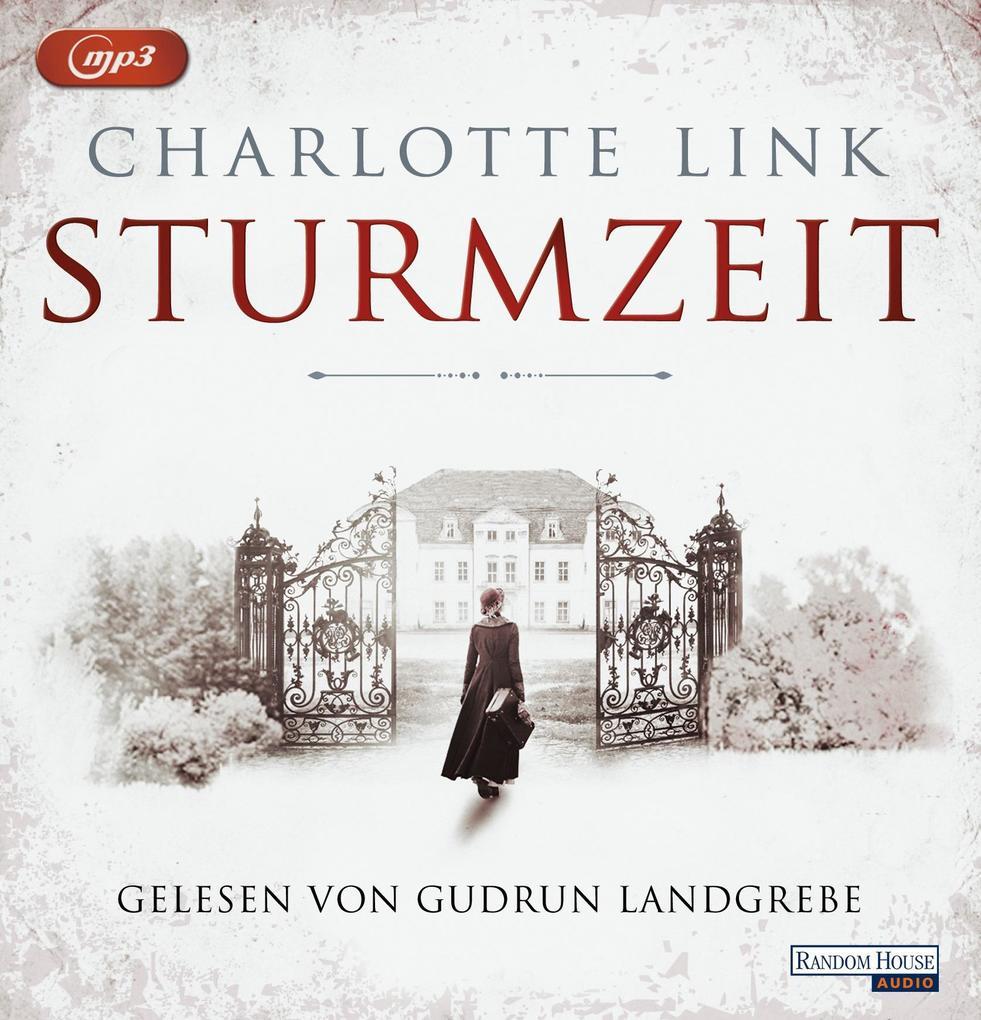 Sturmzeit Bd. 1 als Hörbuch CD