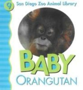Baby Orangutan als Buch (kartoniert)