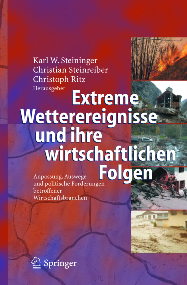 Extreme Wetterereignisse und ihre wirtschaftlichen Folgen als Buch von