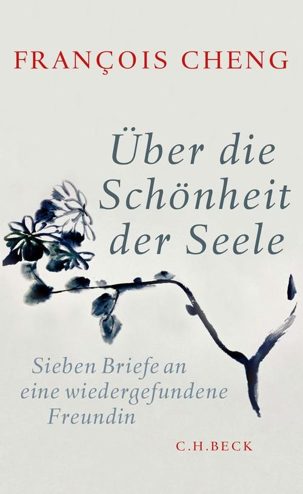 Über die Schönheit der Seele als eBook