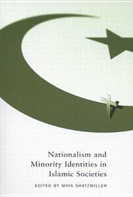 Nationalism and Minority Identities in Islamic Societies als Taschenbuch