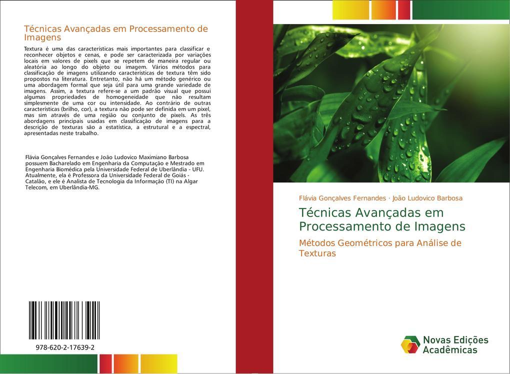 Técnicas Avançadas em Processamento de Imagens als Buch von Flávia Gonçalves Fernandes, João Ludovico Barbosa - Novas Edições Acadêmicas