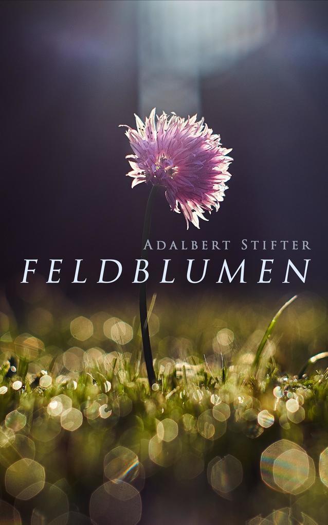 Feldblumen als eBook epub