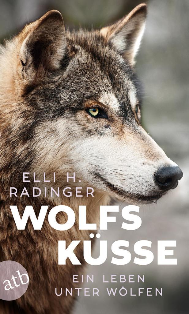 Wolfsküsse als Taschenbuch