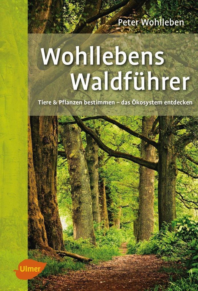 Wohllebens Waldführer als eBook epub