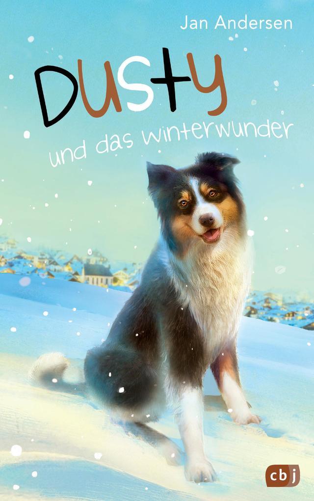Dusty und das Winterwunder als Buch