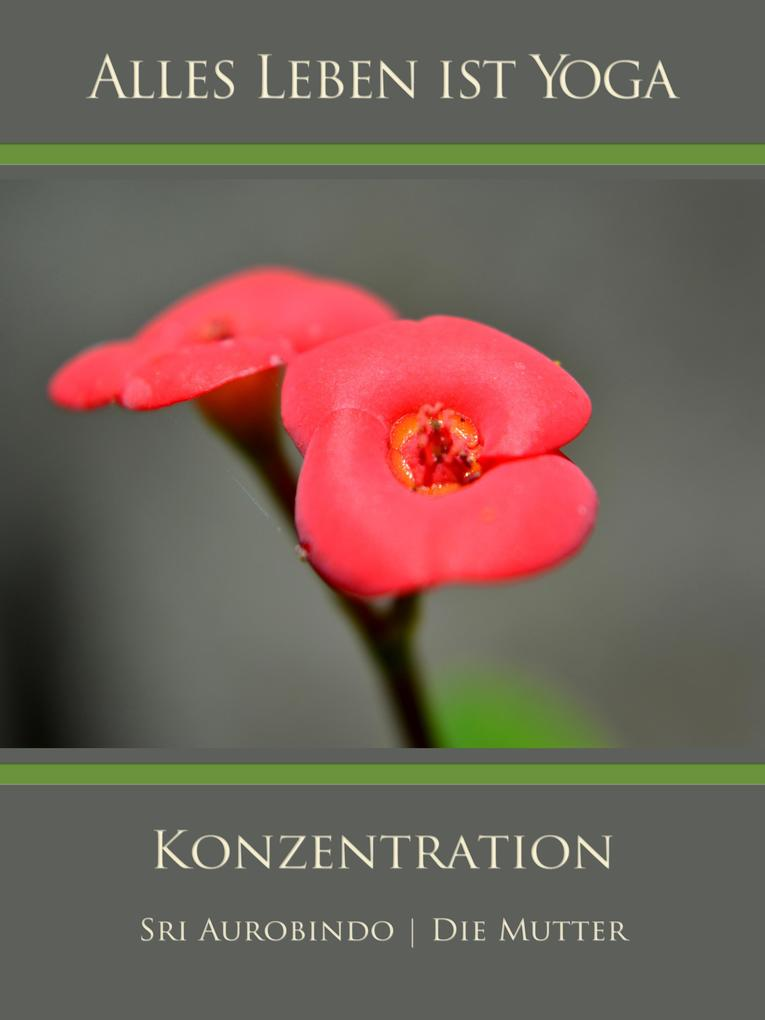 Konzentration als eBook