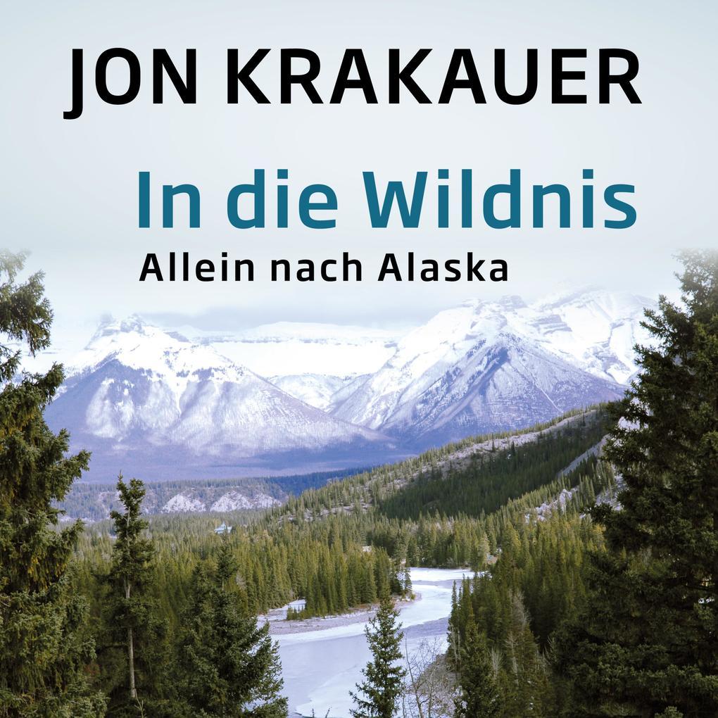 In die Wildnis als Hörbuch Download
