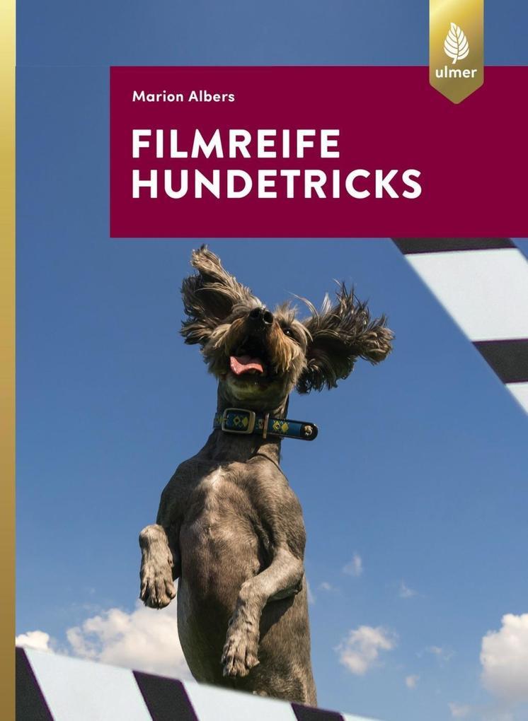 Filmreife Hundetricks
