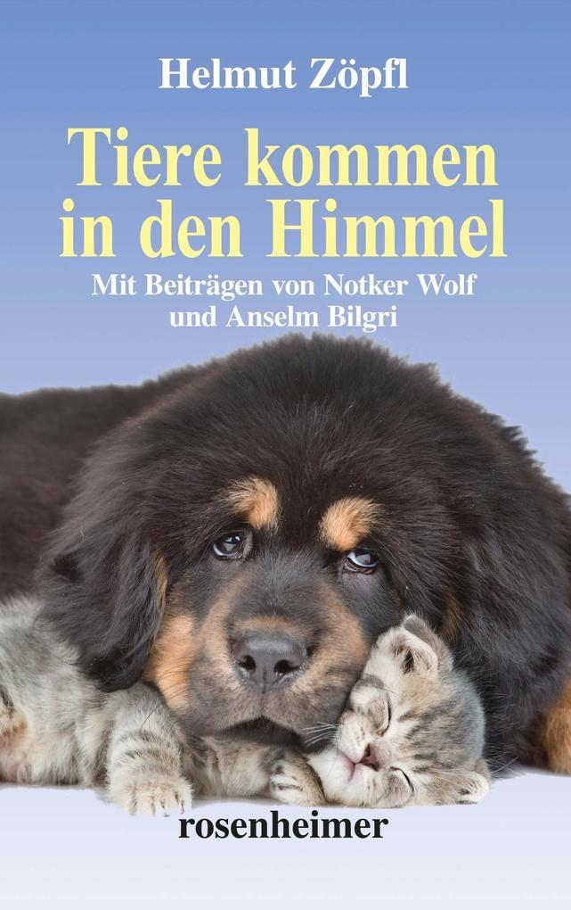 Tiere kommen in den Himmel als Buch (gebunden)