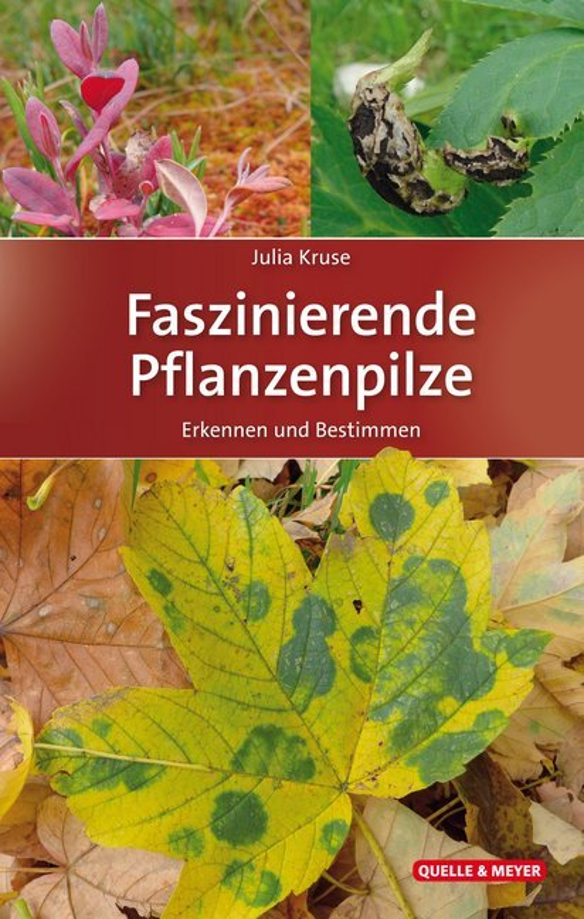 Faszinierende Pflanzenpilze als Buch