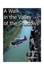 A Walk in the Valley of the Shadows