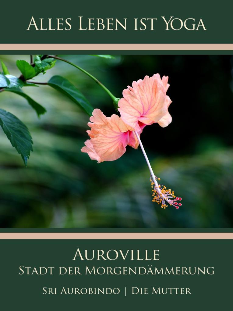 Auroville - Stadt der Morgendämmerung als eBook