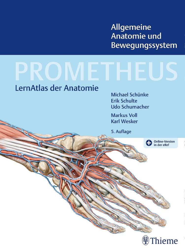 PROMETHEUS Allgemeine Anatomie und Bewegungssystem als eBook